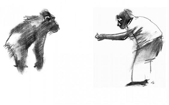 baillairge-monkey